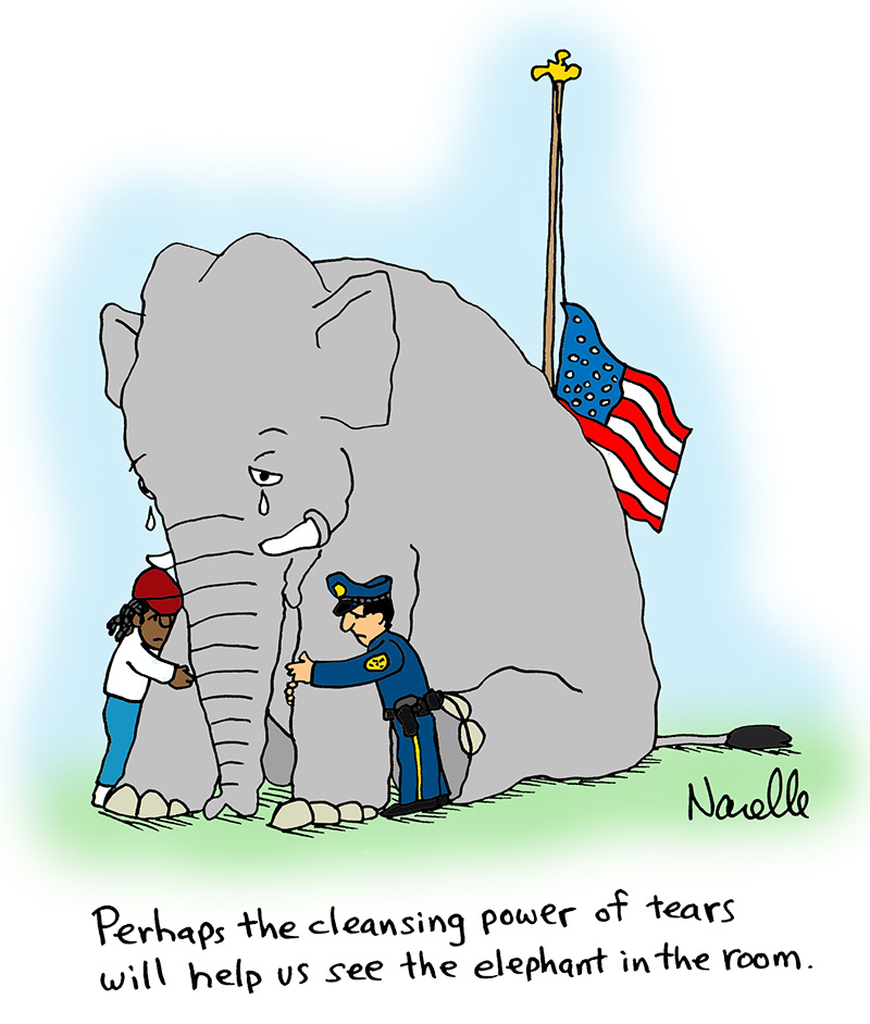 Perhaps the cleansing power of tears will help us see the elephant in the room. - Brian Narelle