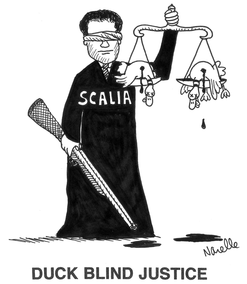 Scalia - Duck Blind Justice